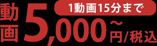 1動画15分まで5,000円/税込〜